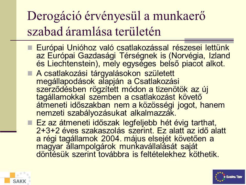 Munkavállalás az Európai Unióban A munkaerő szabad áramlása az egyeséges belső piacon(1) A munkavállalásra érvényes közösségi szabályozás Győr 2005. o