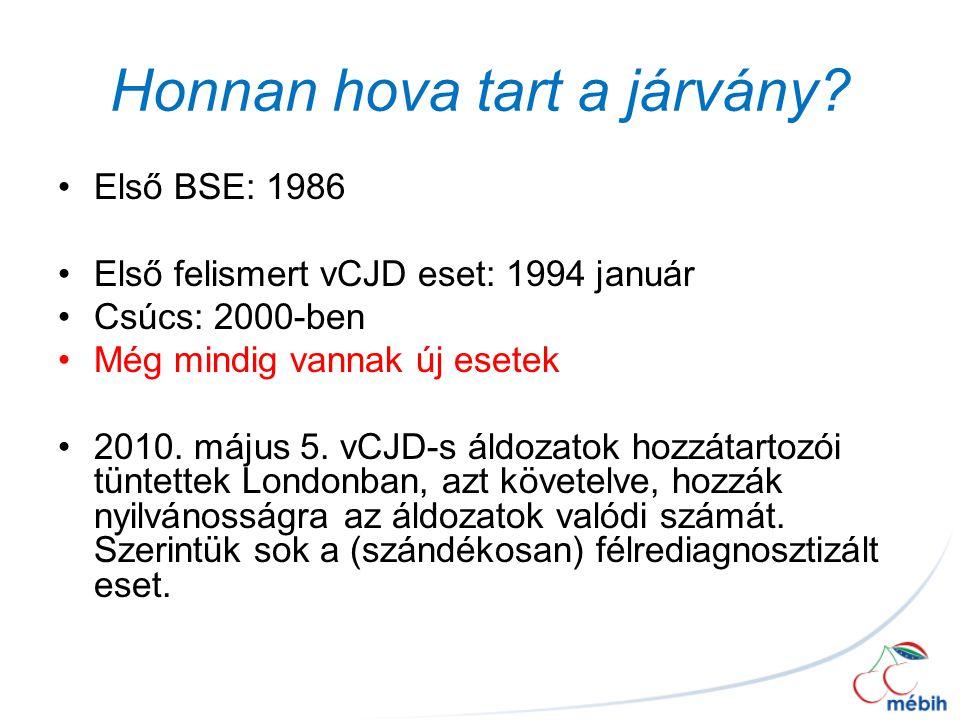 Honnan hova tart a járvány? Első BSE: 1986 Első felismert vCJD eset: 1994 január Csúcs: 2000-ben Még mindig vannak új esetek 2010. május 5. vCJD-s áld