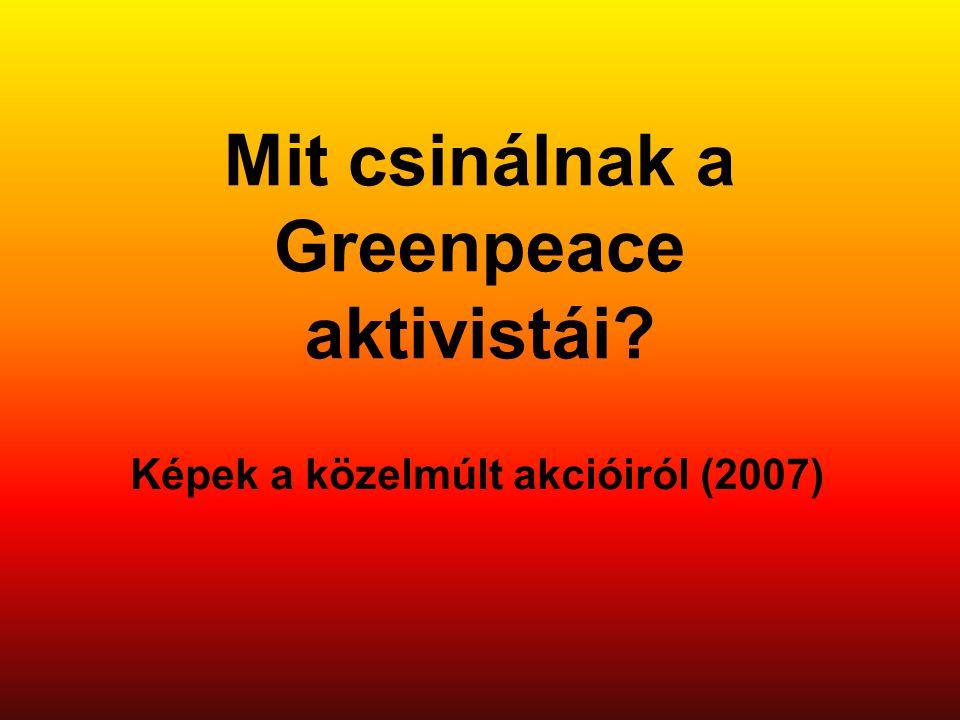 Mit csinálnak a Greenpeace aktivistái? Képek a közelmúlt akcióiról (2007)