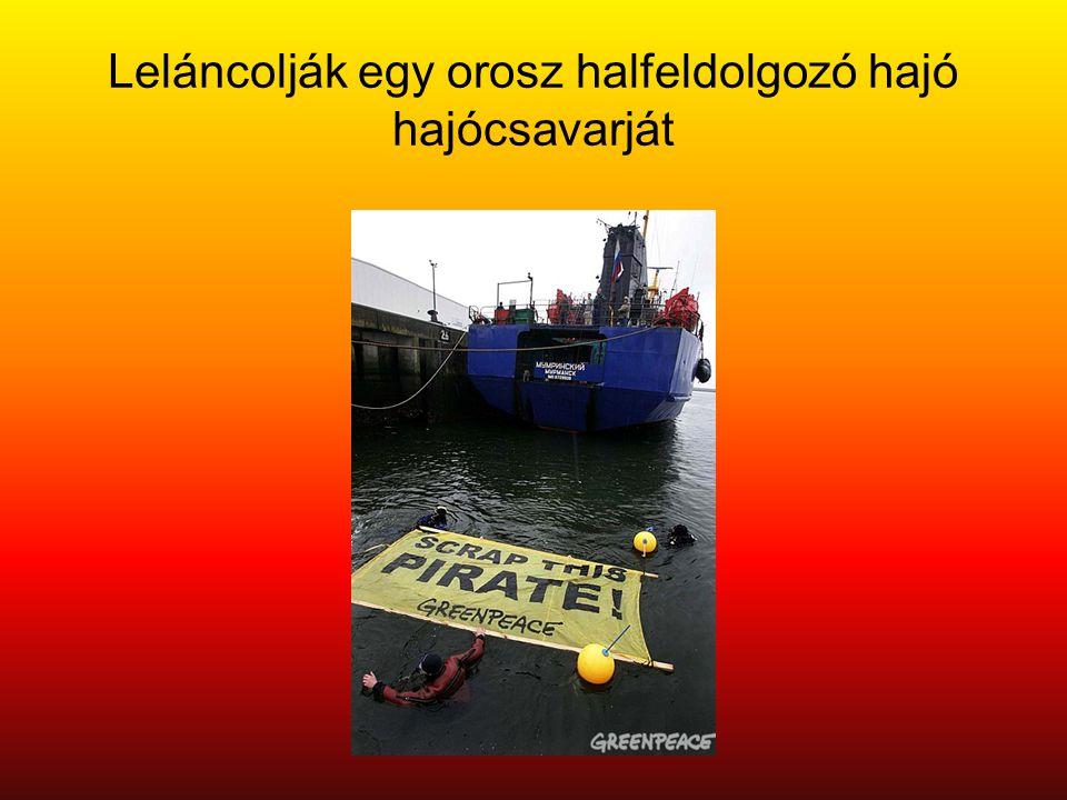 Leláncolják egy orosz halfeldolgozó hajó hajócsavarját