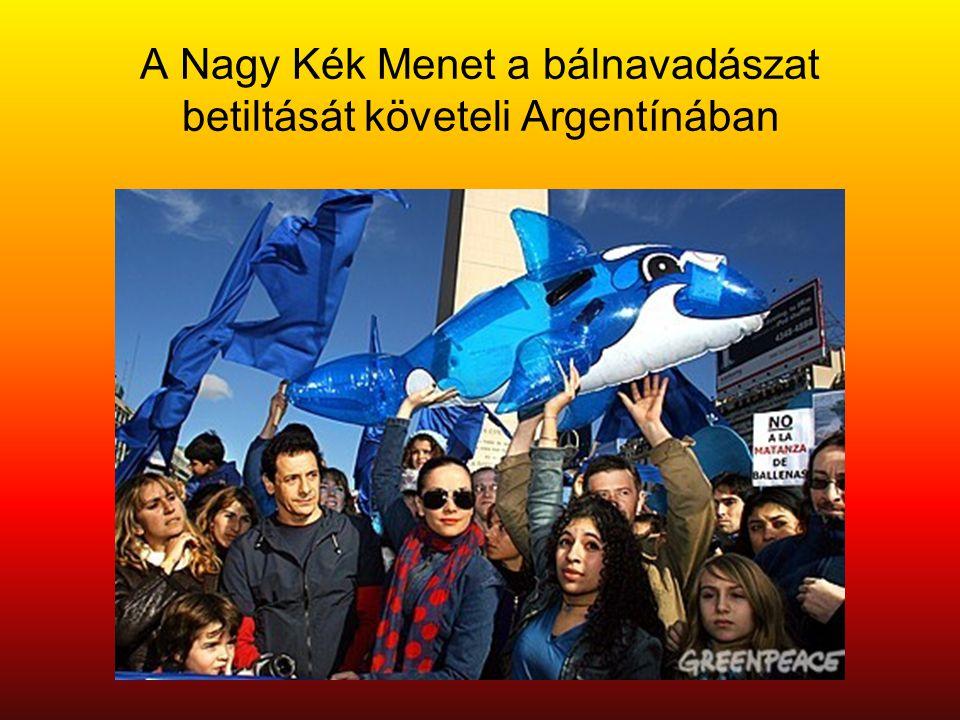A Nagy Kék Menet a bálnavadászat betiltását követeli Argentínában