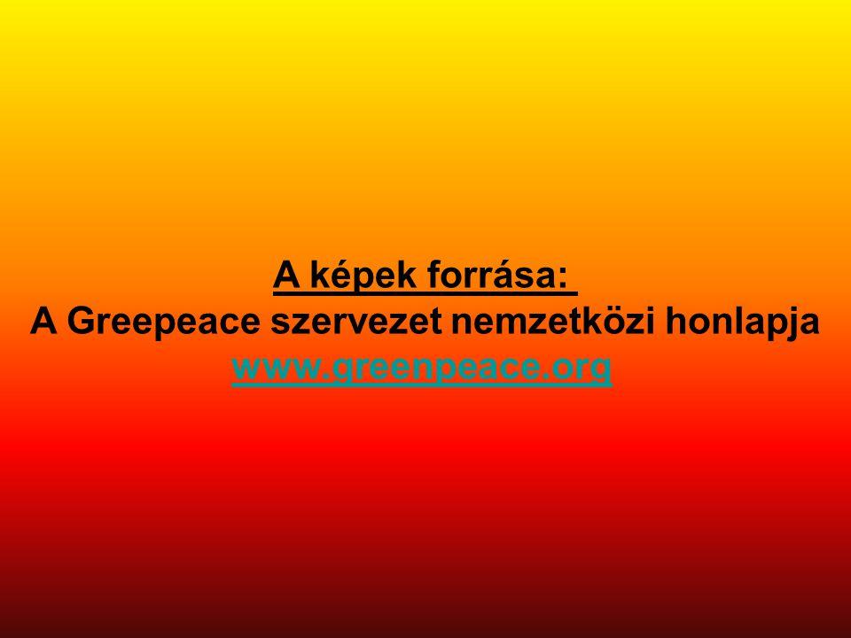 A képek forrása: A Greepeace szervezet nemzetközi honlapja www.greenpeace.org