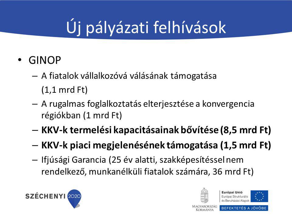 Új pályázati felhívások GINOP – A fiatalok vállalkozóvá válásának támogatása (1,1 mrd Ft) – A rugalmas foglalkoztatás elterjesztése a konvergencia rég