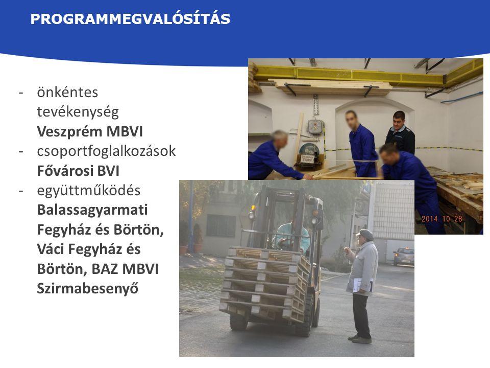 PROGRAMMEGVALÓSÍTÁS -önkéntes tevékenység Veszprém MBVI -csoportfoglalkozások Fővárosi BVI -együttműködés Balassagyarmati Fegyház és Börtön, Váci Fegy
