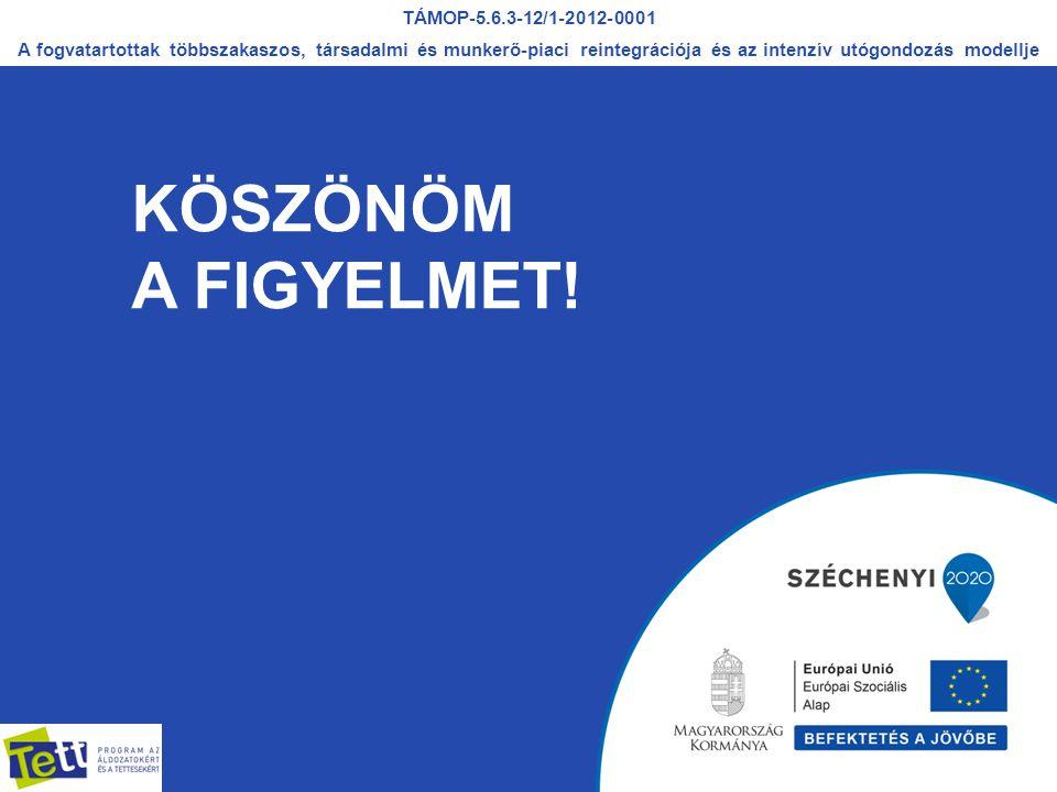 KÖSZÖNÖM A FIGYELMET! TÁMOP-5.6.3-12/1-2012-0001 A fogvatartottak többszakaszos, társadalmi és munkerő-piaci reintegrációja és az intenzív utógondozás
