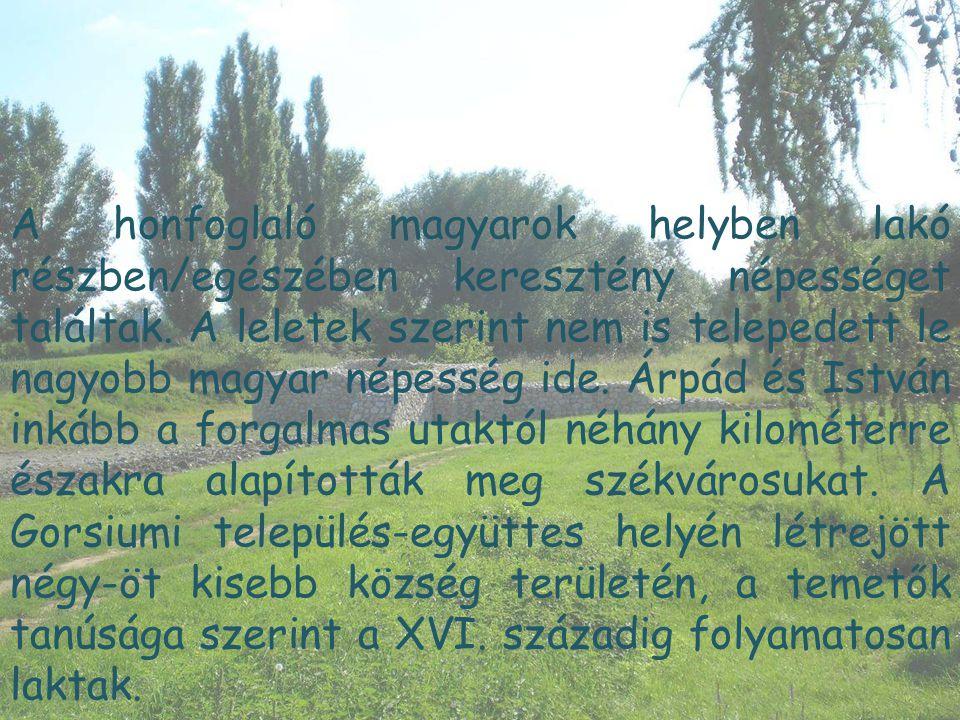 A honfoglaló magyarok helyben lakó részben/egészében keresztény népességet találtak. A leletek szerint nem is telepedett le nagyobb magyar népesség id