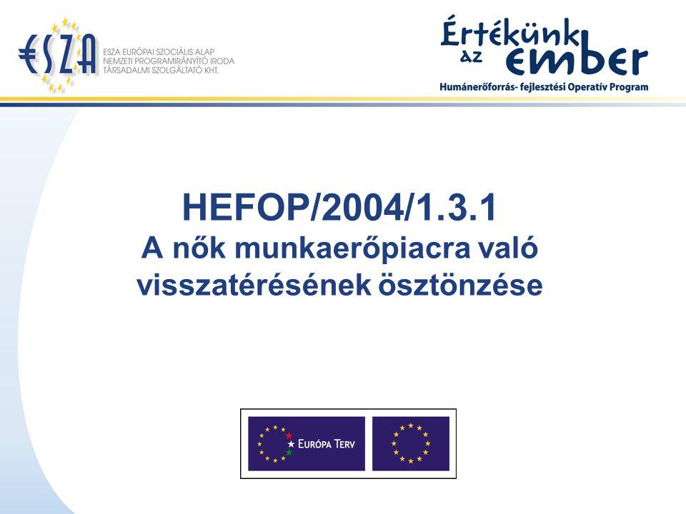HEFOP/2004/1.3.1 A nők munkaerőpiacra való visszatérésének ösztönzése