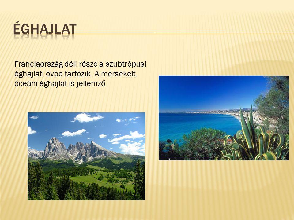 Franciaország déli része a szubtrópusi éghajlati övbe tartozik. A mérsékelt, óceáni éghajlat is jellemző.
