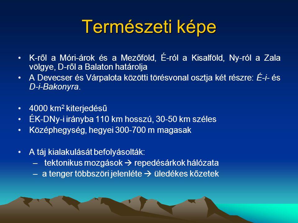 Hat természetföldrajzi kistájra osztható: –Északi-Bakony (Öreg- vagy Magas-Bakony) –Déli-Bakony –Balaton-felvidék –Tapolcai-medence –Keszthelyi-hegység –Pannonhalmi-hátság vagy Sokoróalja Az É-ÉNy-i pereme: Bakonyalja