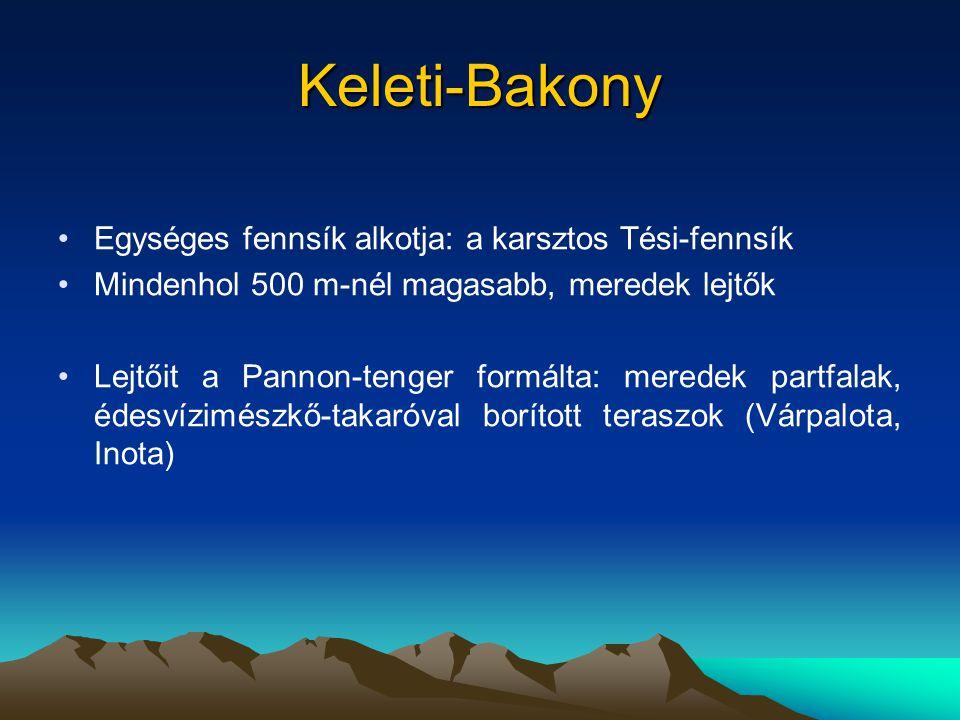 Keleti-Bakony Egységes fennsík alkotja: a karsztos Tési-fennsík Mindenhol 500 m-nél magasabb, meredek lejtők Lejtőit a Pannon-tenger formálta: meredek partfalak, édesvízimészkő-takaróval borított teraszok (Várpalota, Inota)