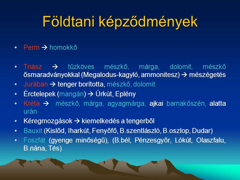 Ipar, bányászat Szénbányászat (mára mindet bezárták): –Ajka és Padrag vidéke –Dudar és környéke –Várpalota (lignit) Bauxitbányák (megszűnt a kitermelés): Nyirád, Halimba, Kislőd, Fenyőfő, Dudar Mangán: Eplény, Úrkút Bakonyi Erőmű Zrt.