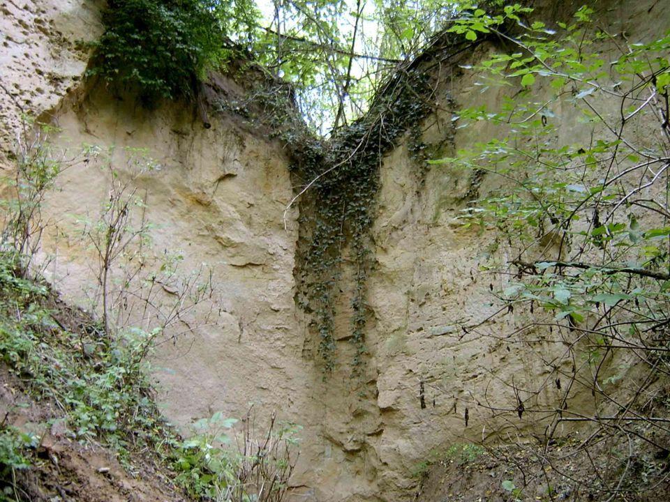 Barlangjai Több mint 500 barlang a karsztosodó mészkőben és dolomitban Felszíni karsztjelenségek: víznyelő, dolina Képződésük már a tengerből való kiemelkedést követően megindult A beszivárgó csapadék + a feltörő termálvíz Jégkorszak  kisebb, egyfülkés barlangok A bazalthegyek üregei tektonikus eredetűek Ősember
