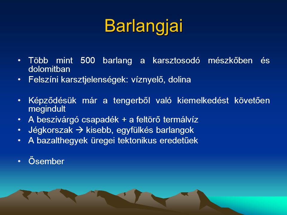 Északi-Bakony Legmagasabb pontja: Kőris-hegy (709 m) A miocénben töredezett sasbércekre és árkos süllyedékekre Változatos kőzetek alkotják: dolomit, mészkő, bauxit, agyag, márga, kavics, homok, lösz  sajátos domborzati típusok alakultak ki Sasbérc  karsztos formák (Kőris-hegy, Som-hegy, Kék-hegy, Papod, Középső-Hajag), nagyesésű lejtőiket száraz völgyek tagolják A sasbércek között tektonikus medencék (Bakonybéli-, Csehbányai- medence) A fennsíkperemeket eróziós szurdokvölgyek tagolják (Cuha-, Gerence-patak, Kő-árok), melyek a hegység lábánál hordalékkúpokat halmoznak fel Északról dombságok (Súri-, Pannonhalmi-dombság), illetve alacsony hordalékkúp-síkságok (Fenyőfői-Bakonyalja) övezik.