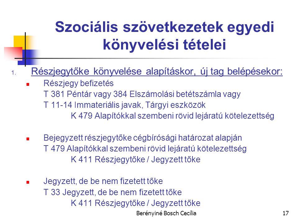 Berényiné Bosch Cecília17 Szociális szövetkezetek egyedi könyvelési tételei 1.