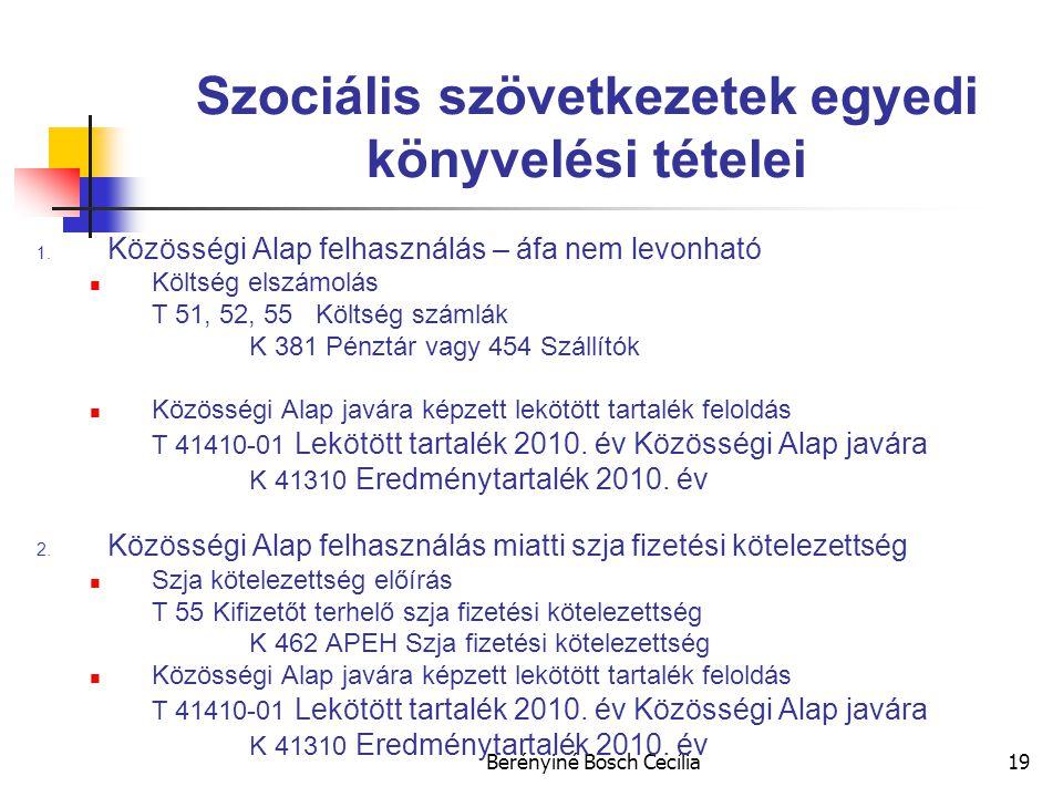 Berényiné Bosch Cecília19 Szociális szövetkezetek egyedi könyvelési tételei 1.