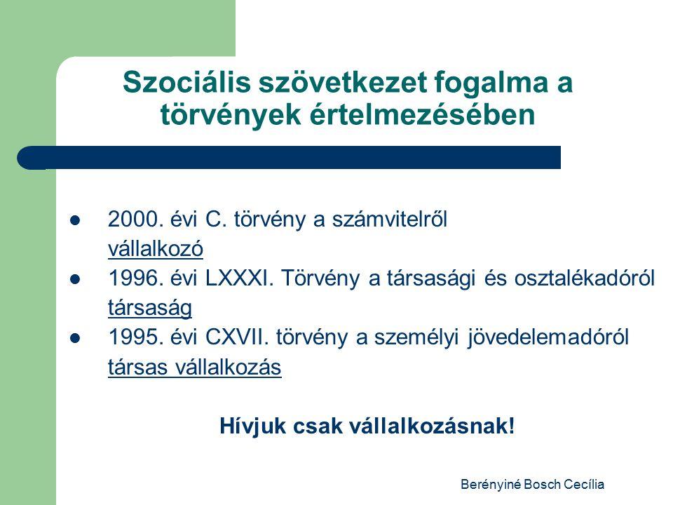 Berényiné Bosch Cecília Szociális szövetkezet fogalma a törvények értelmezésében 2000.