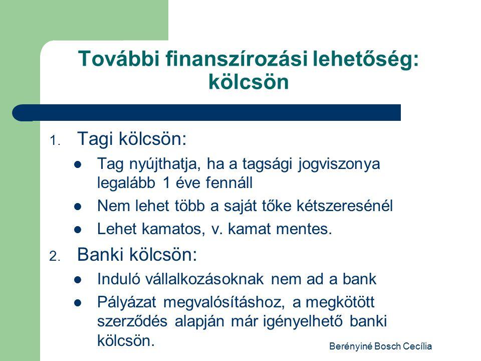 Berényiné Bosch Cecília További finanszírozási lehetőség: kölcsön 1.