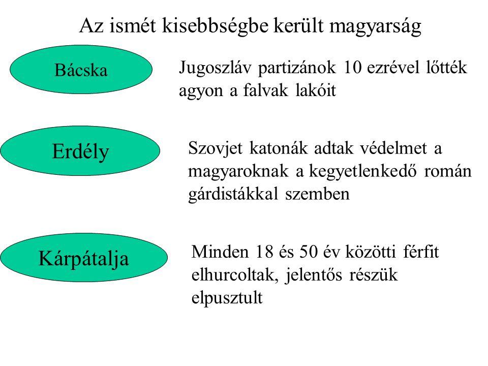Az ismét kisebbségbe került magyarság Bácska Jugoszláv partizánok 10 ezrével lőtték agyon a falvak lakóit Erdély Szovjet katonák adtak védelmet a magy