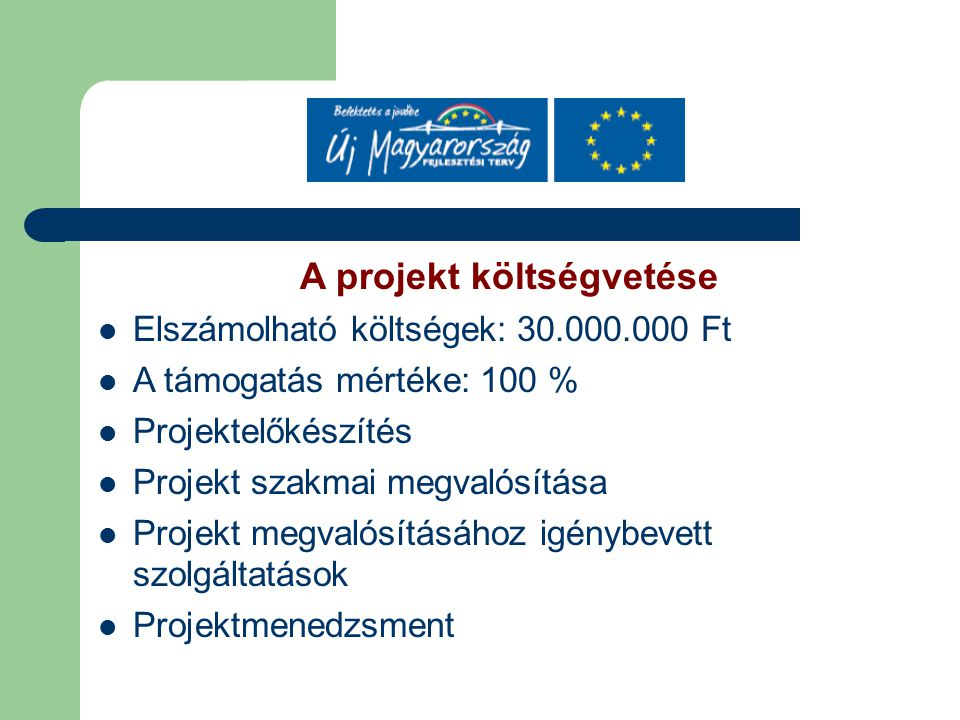 A projekt költségvetése Elszámolható költségek: 30.000.000 Ft A támogatás mértéke: 100 % Projektelőkészítés Projekt szakmai megvalósítása Projekt megvalósításához igénybevett szolgáltatások Projektmenedzsment