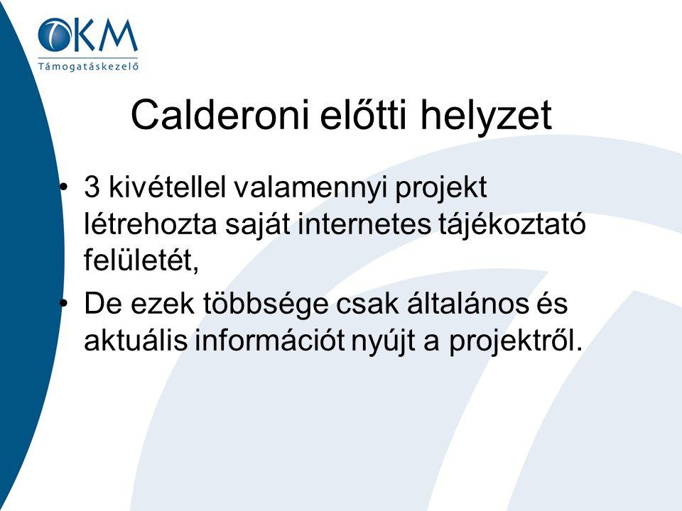 Calderoni előtti helyzet 3 kivétellel valamennyi projekt létrehozta saját internetes tájékoztató felületét, De ezek többsége csak általános és aktuáli
