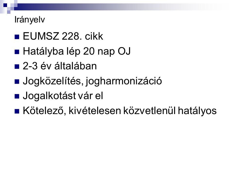 Irányelv EUMSZ 228.
