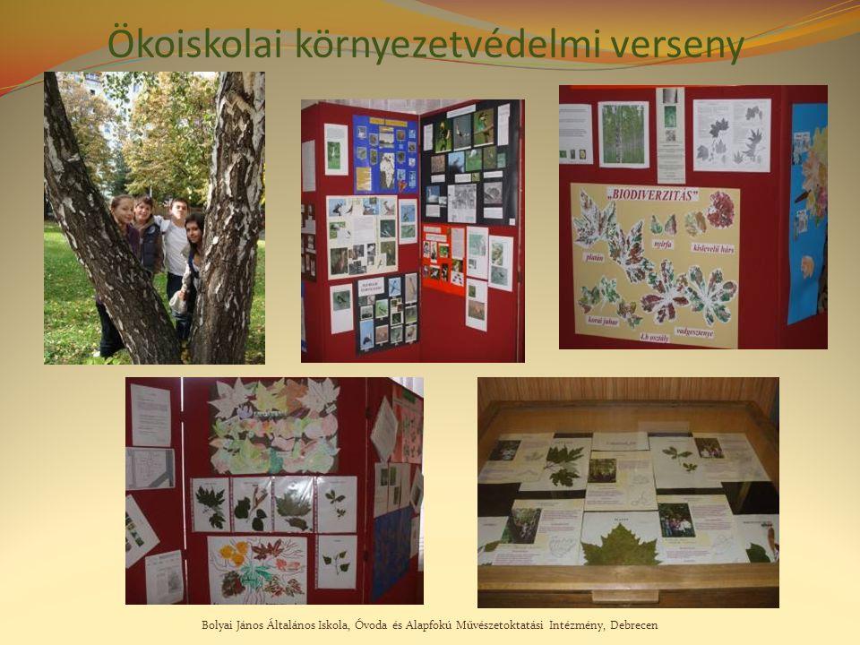 Bolyai János Általános Iskola, Óvoda és Alapfokú Művészetoktatási Intézmény, Debrecen Ökoiskolai környezetvédelmi verseny
