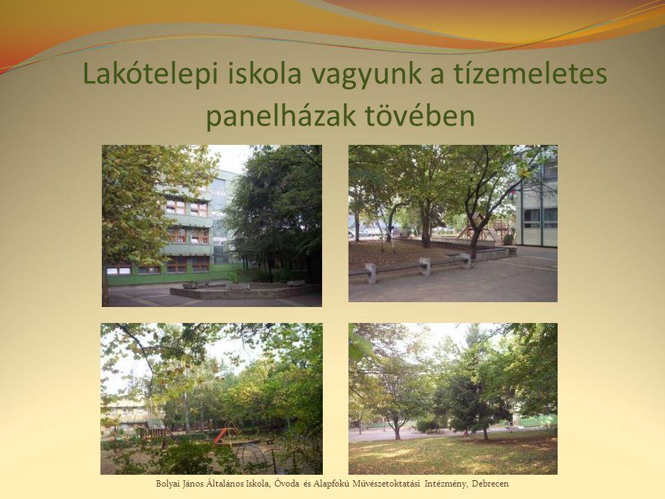 Bolyai János Általános Iskola, Óvoda és Alapfokú Művészetoktatási Intézmény, Debrecen Lakótelepi iskola vagyunk a tízemeletes panelházak tövében
