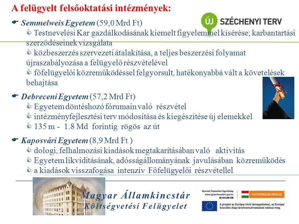 Magyar Államkincstár Költségvetési Felügyelet A felügyelt felsőoktatási intézmények:  Semmelweis Egyetem (59,0 Mrd Ft)  Testnevelési Kar gazdálkodás