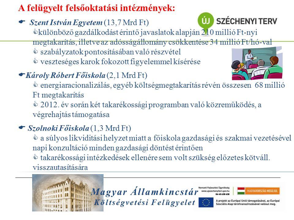 Magyar Államkincstár Költségvetési Felügyelet A felügyelt felsőoktatási intézmények:  Szent István Egyetem (13,7 Mrd Ft)  különböző gazdálkodást éri