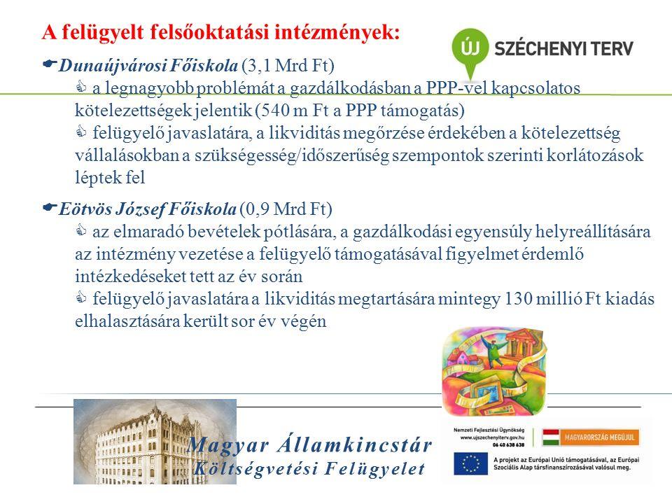 Magyar Államkincstár Költségvetési Felügyelet A felügyelt felsőoktatási intézmények:  Dunaújvárosi Főiskola (3,1 Mrd Ft)  a legnagyobb problémát a g