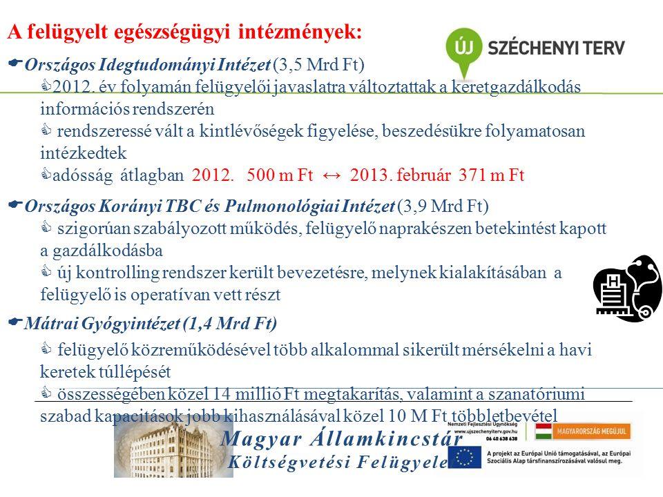 Magyar Államkincstár Költségvetési Felügyelet A felügyelt egészségügyi intézmények:  Országos Idegtudományi Intézet (3,5 Mrd Ft)  2012. év folyamán