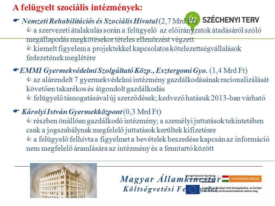Magyar Államkincstár Költségvetési Felügyelet A felügyelt szociális intézmények:  Nemzeti Rehabilitációs és Szociális Hivatal (2,7 Mrd Ft)  a szerve