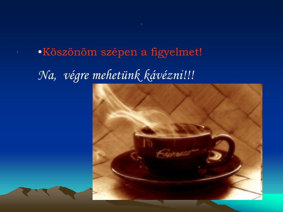 ' ' Köszönöm szépen a figyelmet! Na, végre mehetünk kávézni!!!