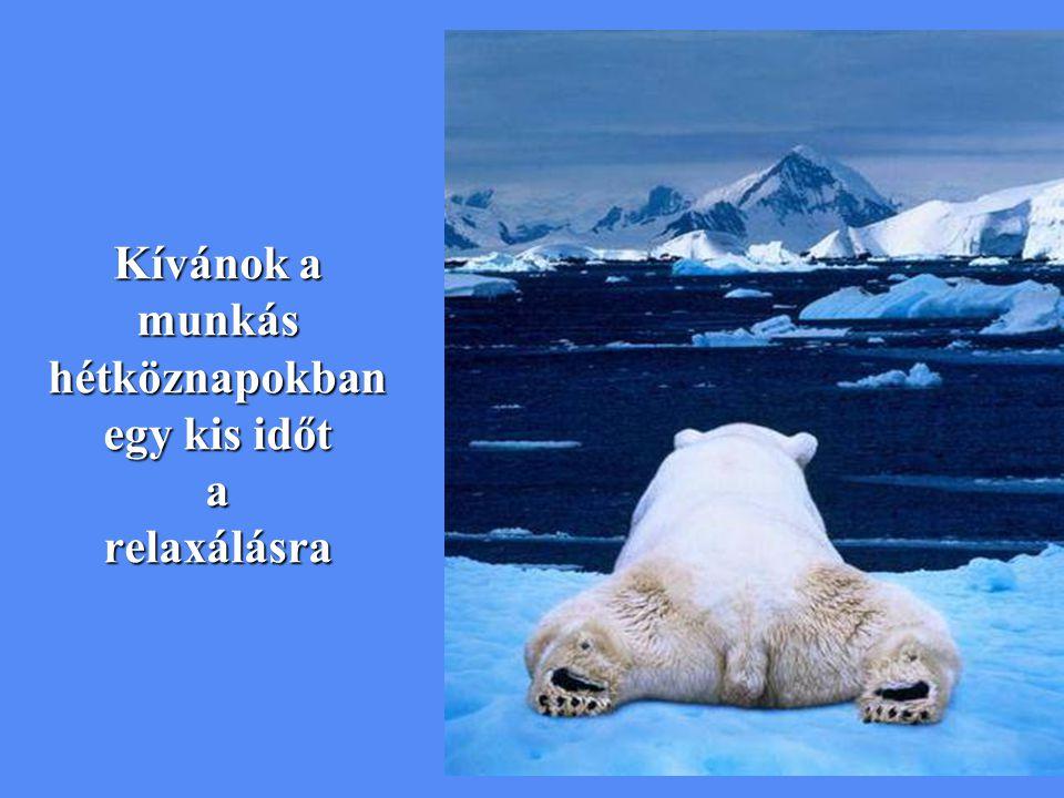 Kívánok a munkás hétköznapokban egy kis időt a relaxálásra