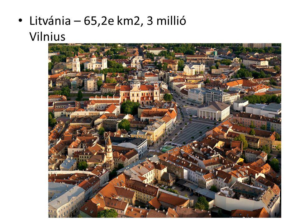 Népesség 1995 óta fogyó népesség + kivándorlás Észtországban 25%, Lettországban 27,8%, Litvániában 5,8% orosz népesség van 1880 óta tartó orosz bevándorlás (szovjet idők!) – Riga, Tallinn közel 50% (ellentétek) Állampolgárság feltétele a hivatalos nyelv alapfokú ismerete, ill.