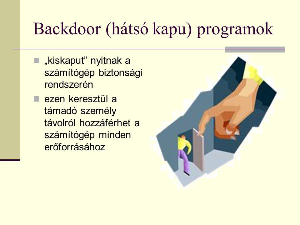 """Backdoor (hátsó kapu) programok """"kiskaput nyitnak a számítógép biztonsági rendszerén ezen keresztül a támadó személy távolról hozzáférhet a számítógép minden erőforrásához"""