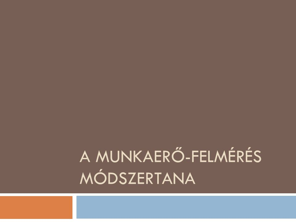 A MUNKAERŐ-FELMÉRÉS MÓDSZERTANA