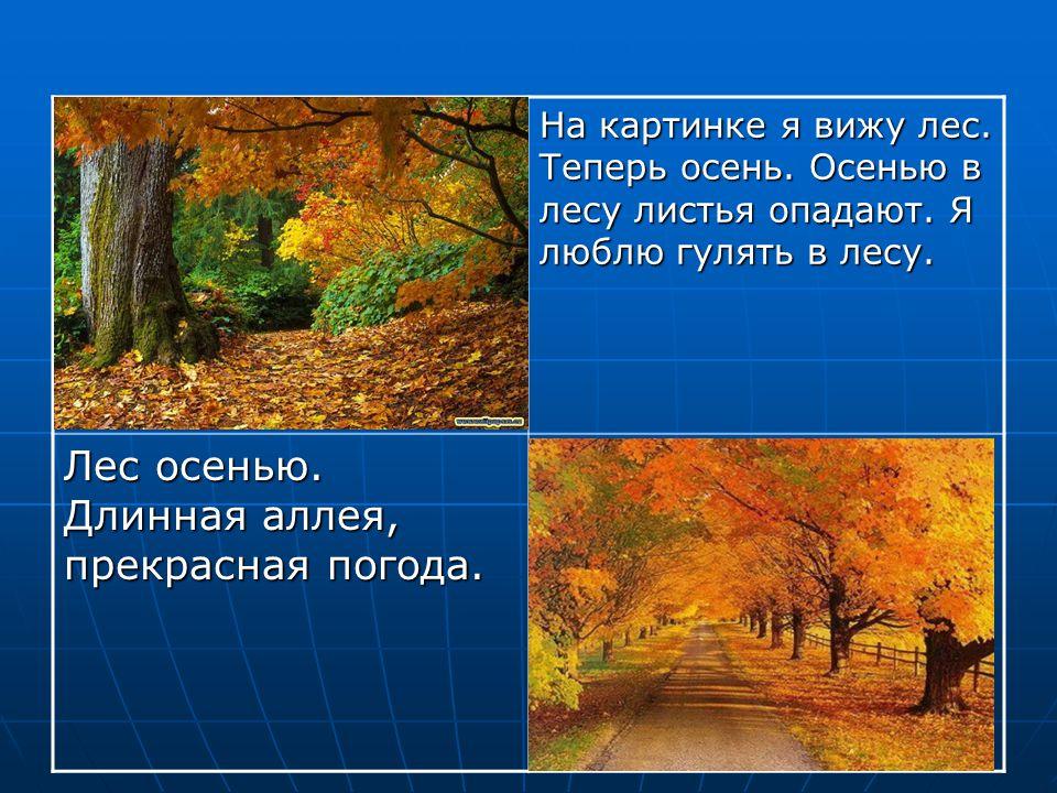 На картинке я вижу лес. Теперь осень. Осенью в лесу листья опадают. Я люблю гулять в лесу. Лес осенью. Длинная аллея, прекрасная погода.