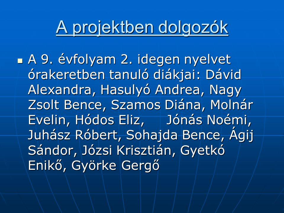 A projektben dolgozók A 9. évfolyam 2. idegen nyelvet órakeretben tanuló diákjai: Dávid Alexandra, Hasulyó Andrea, Nagy Zsolt Bence, Szamos Diána, Mol