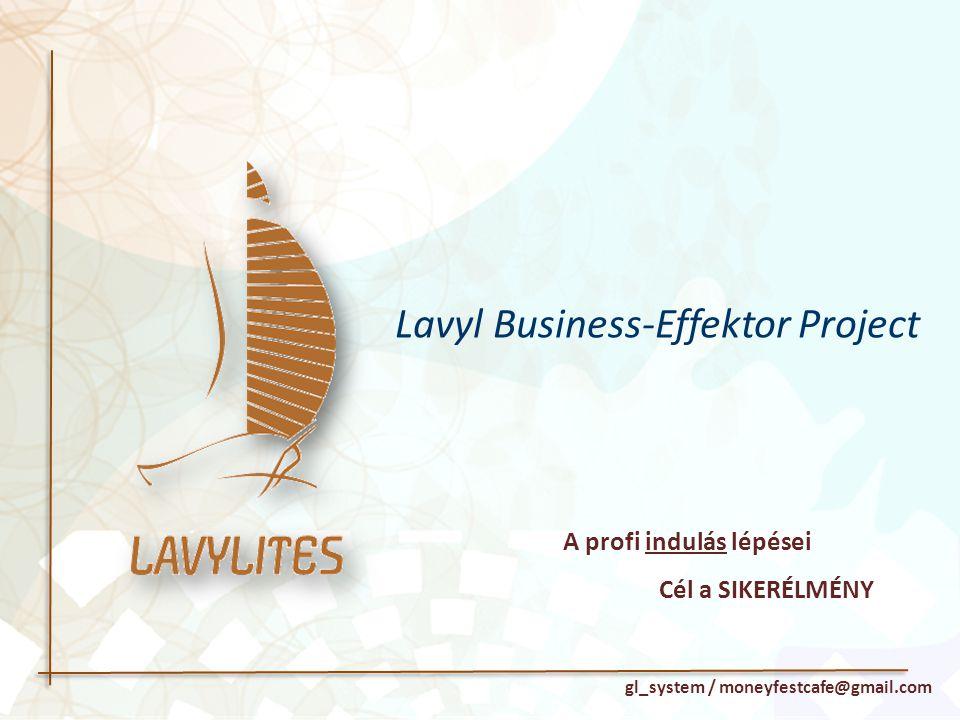 A profi indulás lépései Cél a SIKERÉLMÉNY gl_system / moneyfestcafe@gmail.com Lavyl Business-Effektor Project