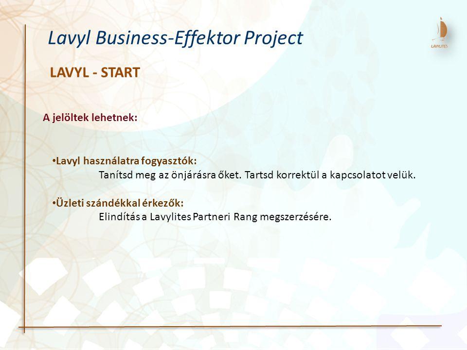 LAVYL - START Lavyl Business-Effektor Project Lavyl használatra fogyasztók: Tanítsd meg az önjárásra őket. Tartsd korrektül a kapcsolatot velük. Üzlet