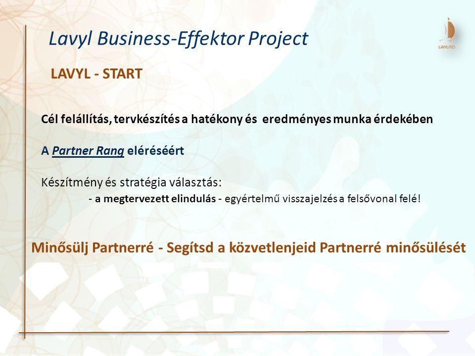 Cél felállítás, tervkészítés a hatékony és eredményes munka érdekében A Partner Rang eléréséért Készítmény és stratégia választás: - a megtervezett el