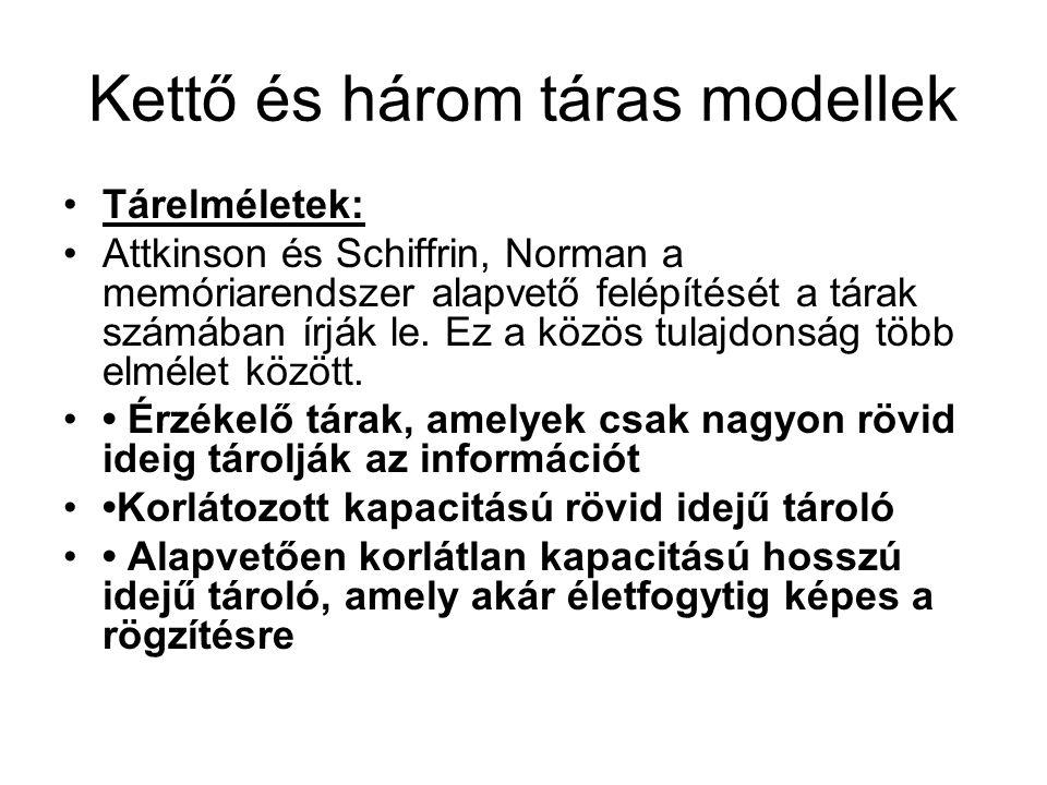 Kettő és három táras modellek Tárelméletek: Attkinson és Schiffrin, Norman a memóriarendszer alapvető felépítését a tárak számában írják le. Ez a közö