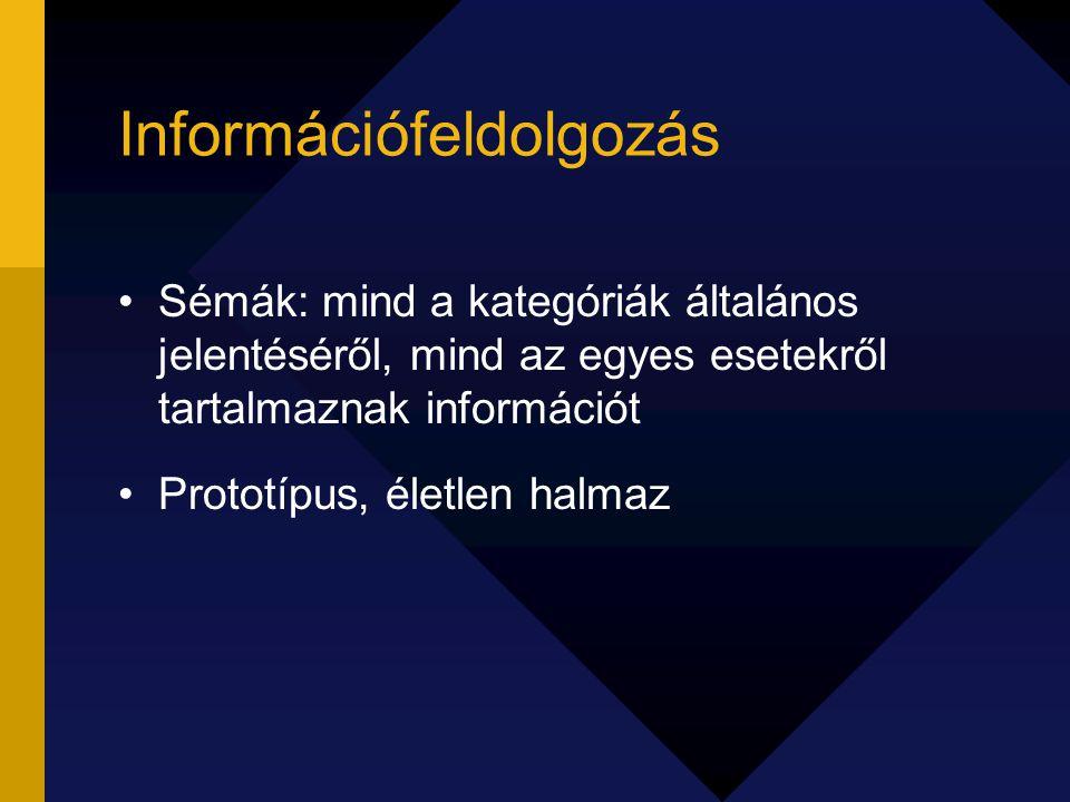 Információfeldolgozás Sémák: mind a kategóriák általános jelentéséről, mind az egyes esetekről tartalmaznak információt Prototípus, életlen halmaz