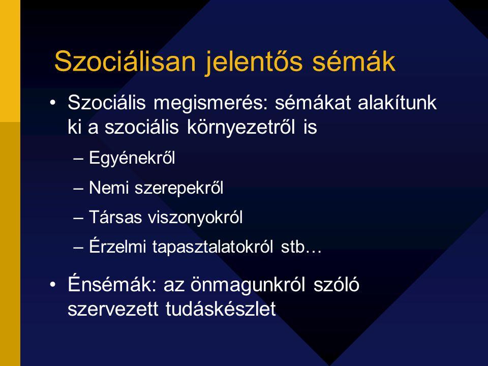Szociálisan jelentős sémák Szociális megismerés: sémákat alakítunk ki a szociális környezetről is –Egyénekről –Nemi szerepekről –Társas viszonyokról –