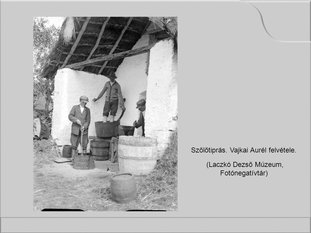 Szőlőtiprás. Vajkai Aurél felvétele. (Laczkó Dezső Múzeum, Fotónegatívtár)