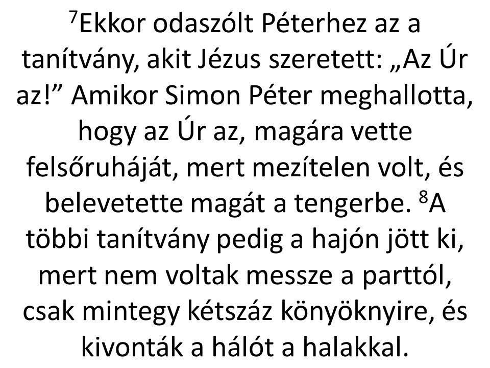 """7 Ekkor odaszólt Péterhez az a tanítvány, akit Jézus szeretett: """"Az Úr az!"""" Amikor Simon Péter meghallotta, hogy az Úr az, magára vette felsőruháját,"""