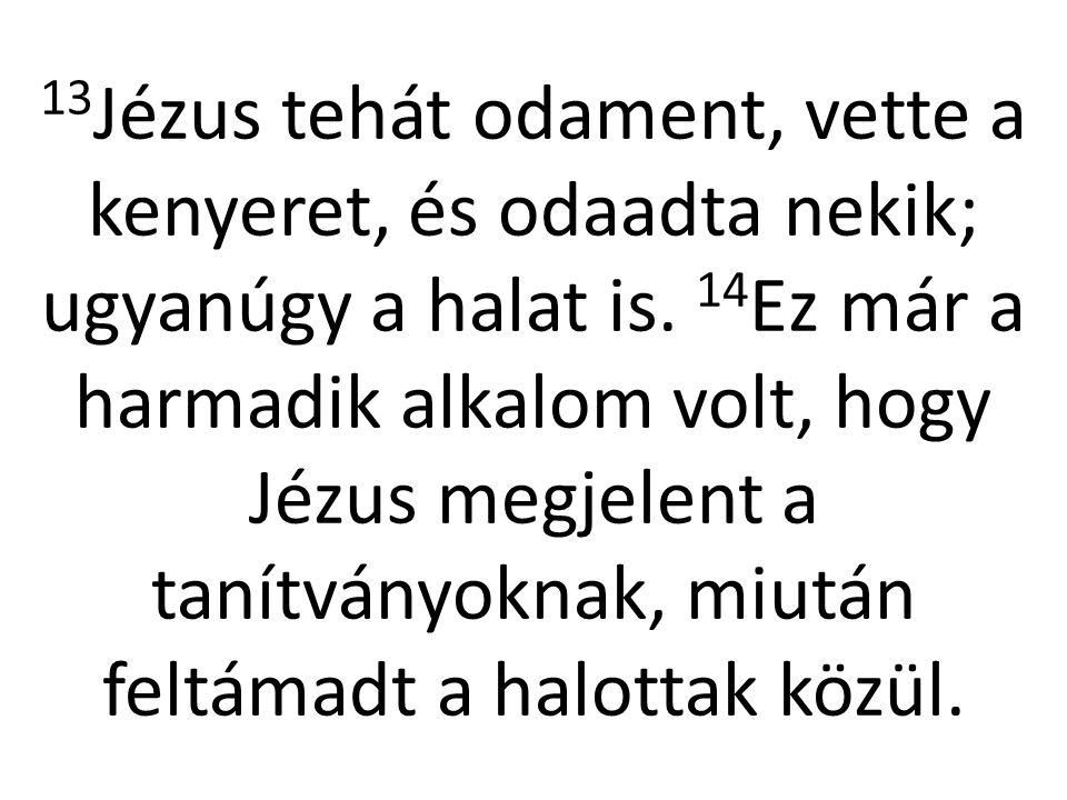 13 Jézus tehát odament, vette a kenyeret, és odaadta nekik; ugyanúgy a halat is. 14 Ez már a harmadik alkalom volt, hogy Jézus megjelent a tanítványok