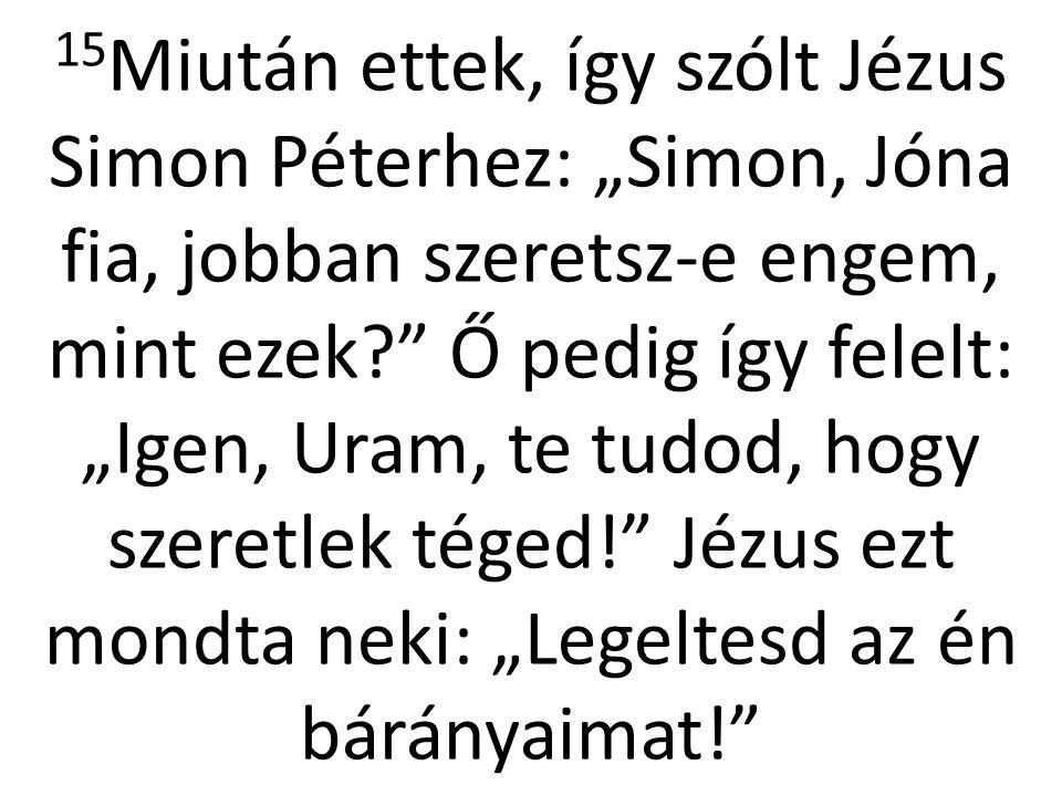 """16 Másodszor is megszólította: """"Simon, Jóna fia, szeretsz-e engem? Ő ismét így válaszolt: """"Igen, Uram, te tudod, hogy szeretlek téged. Jézus erre ezt mondta neki: """"Őrizd az én juhaimat! 17 Harmadszor is szólt hozzá: """"Simon, Jóna fia, szeretsz-e engem? Péter elszomorodott, hogy harmadszor is megkérdezte tőle: szeretsz-e engem."""