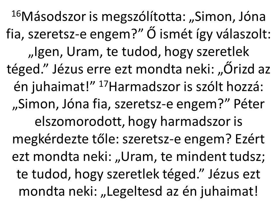 """16 Másodszor is megszólította: """"Simon, Jóna fia, szeretsz-e engem?"""" Ő ismét így válaszolt: """"Igen, Uram, te tudod, hogy szeretlek téged."""" Jézus erre ez"""